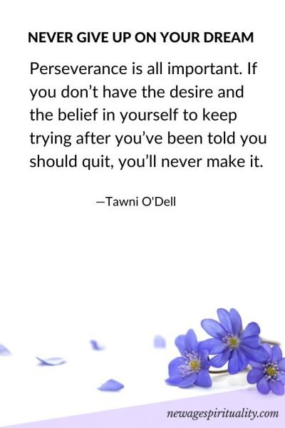 Never give up on your dream…Perseverance is all important. If you don't have the desire and the belief in yourself to keep trying after you've been told you should quit, you'll never make it. Tawni O'Dell