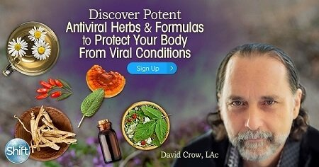 The Ayurvedic Use of Essential Oils for Healing with David Crow