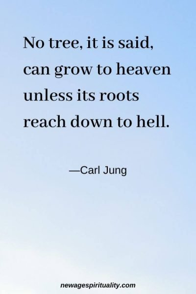 No tree, it is said, can grow to heaven unless its roots reach down to hell. Carl Jung