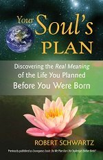 Your Soul's plan book cover