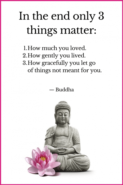 In the end only 3 things matter, how much you loved, how gently you lived and how gracefully you let go of things not meant for you Buddha